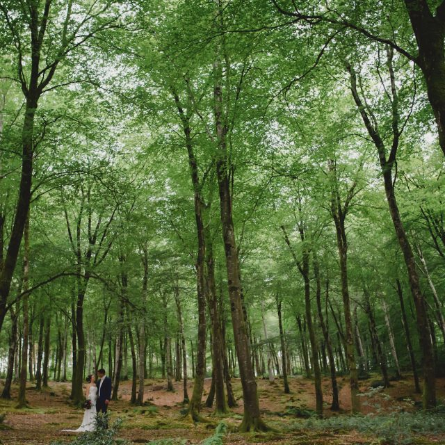 woodland wedding cornwall
