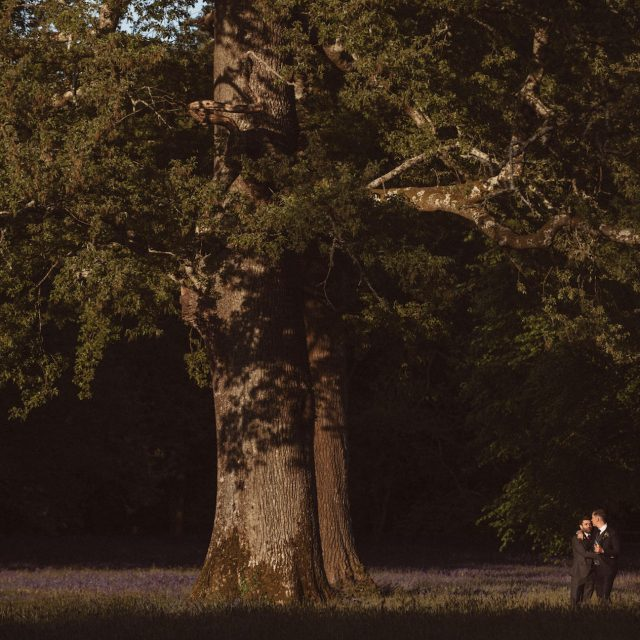 Wedding couple in bluebell field at Enys House in Cornwall